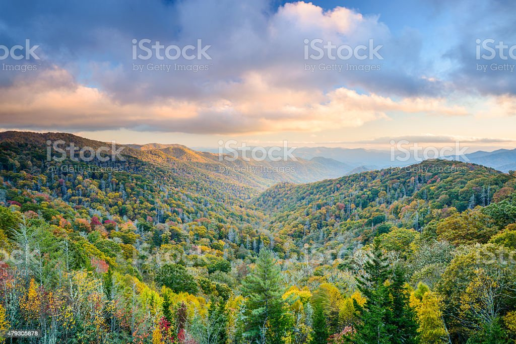 Smoky Mountains in Autumn stock photo
