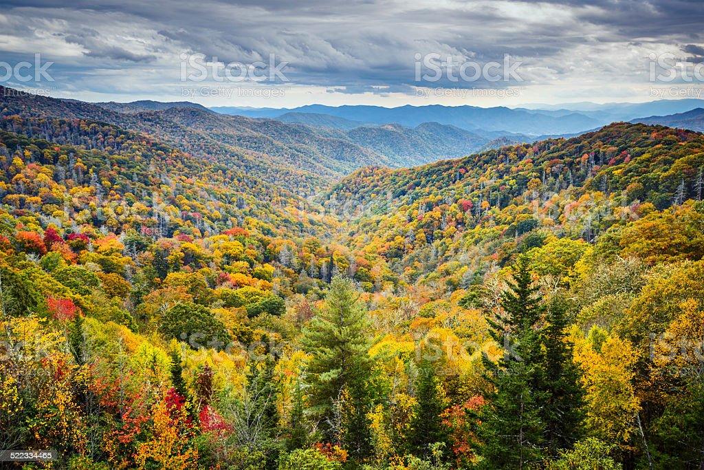 Smoky Mountains National Park stock photo
