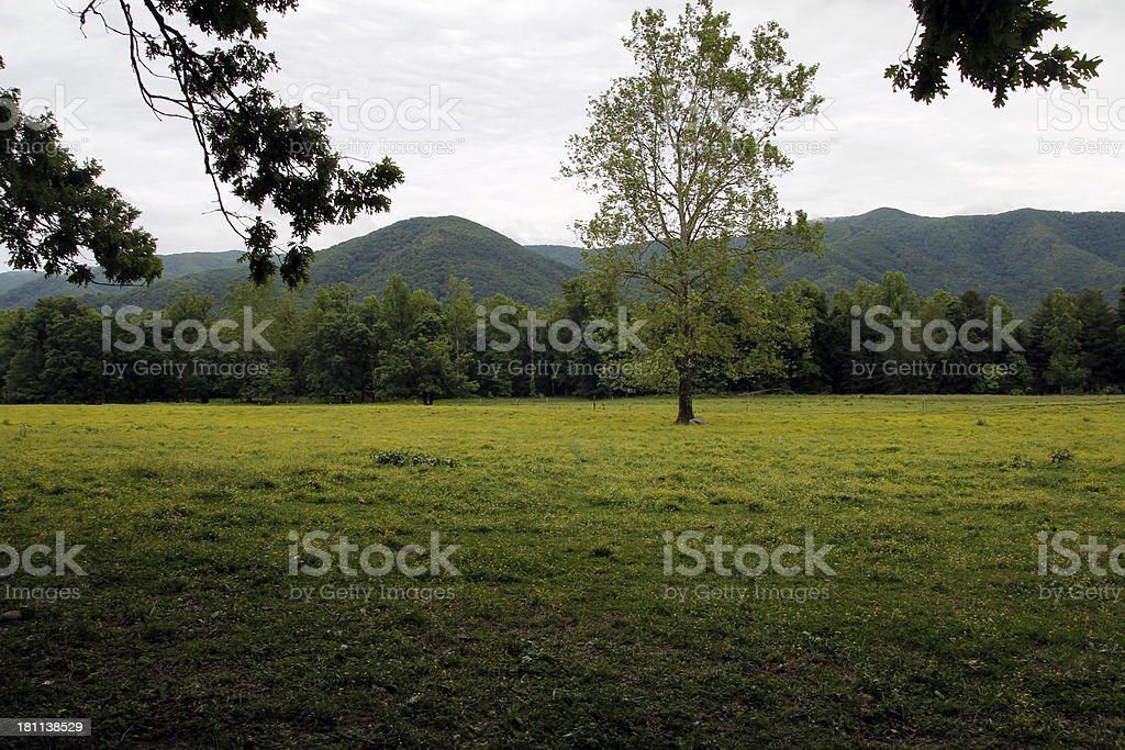 Smoky Mountains royalty-free stock photo