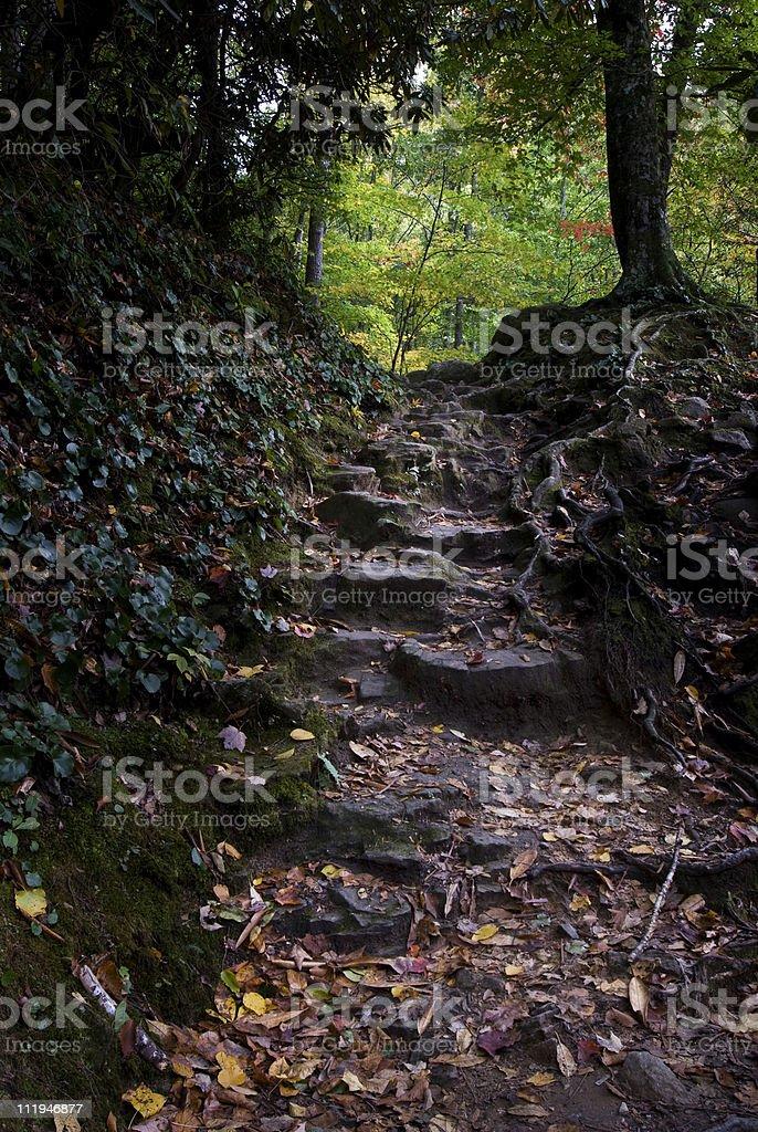 Smoky Mountains Stairway royalty-free stock photo