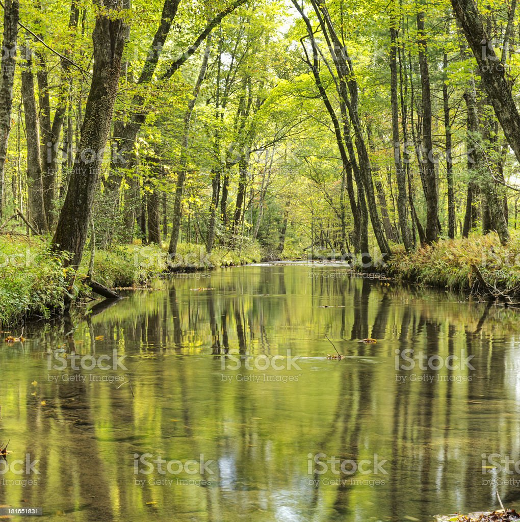 Smoky Mountains Tranquil Creek Reflection royalty-free stock photo