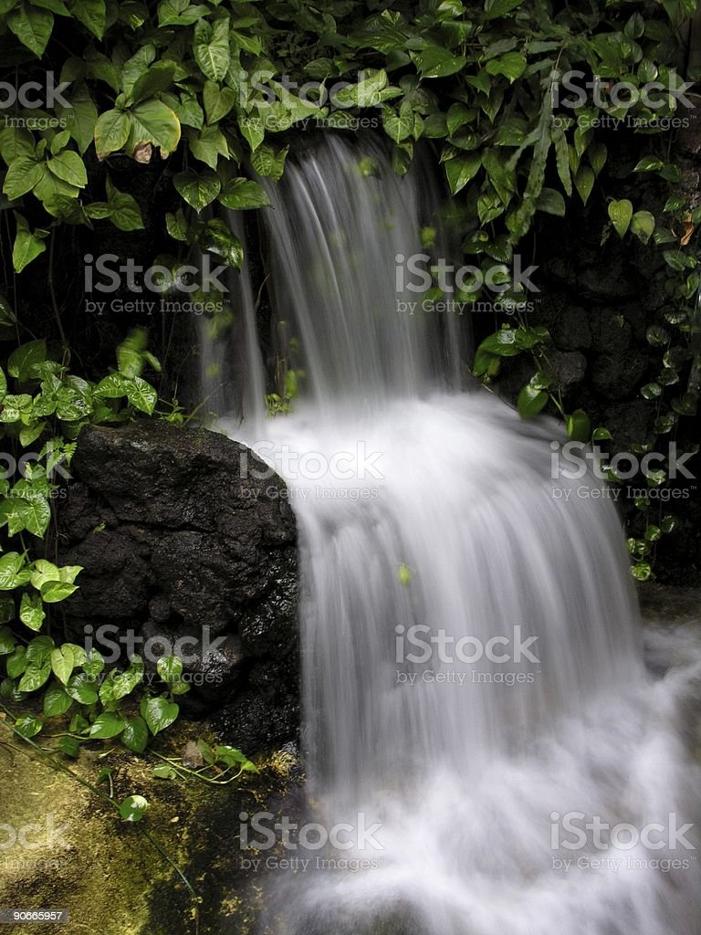 Smooth Fall royalty-free stock photo