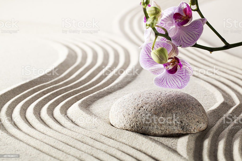 smooth progression with suppleness and flexibility royalty-free stock photo