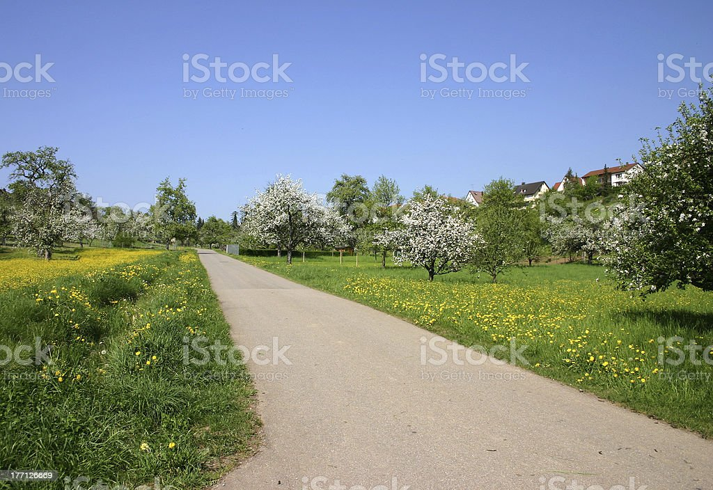 Smooth road royalty-free stock photo