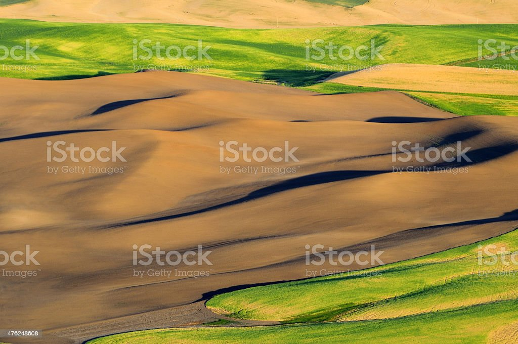 Smooth texture landscape in Palouse stock photo