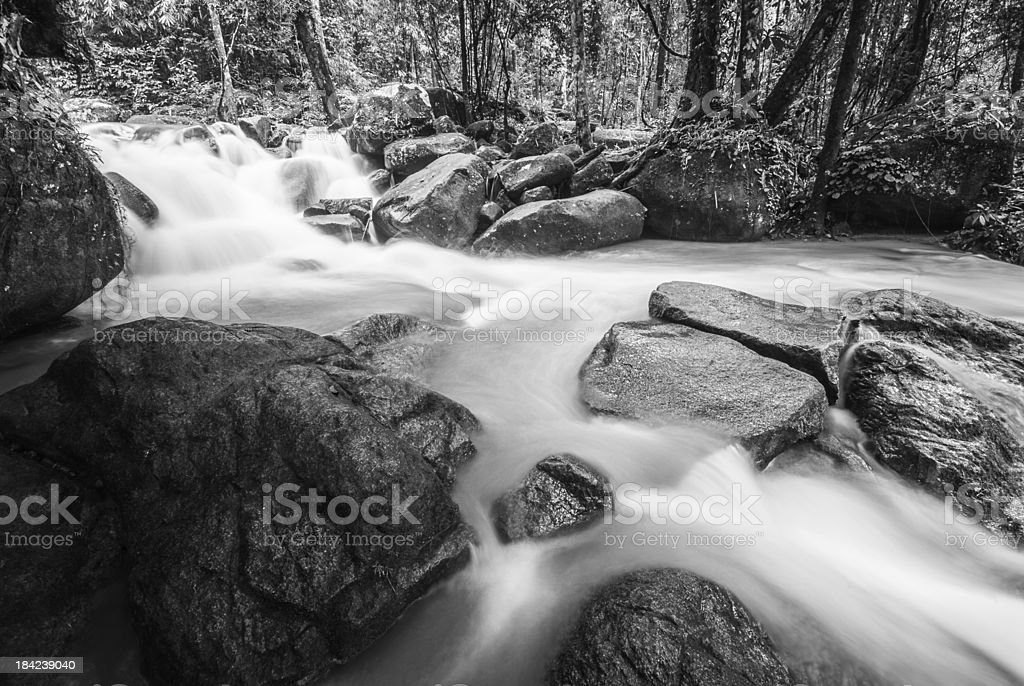 smooth waterfall in forest royalty-free stock photo