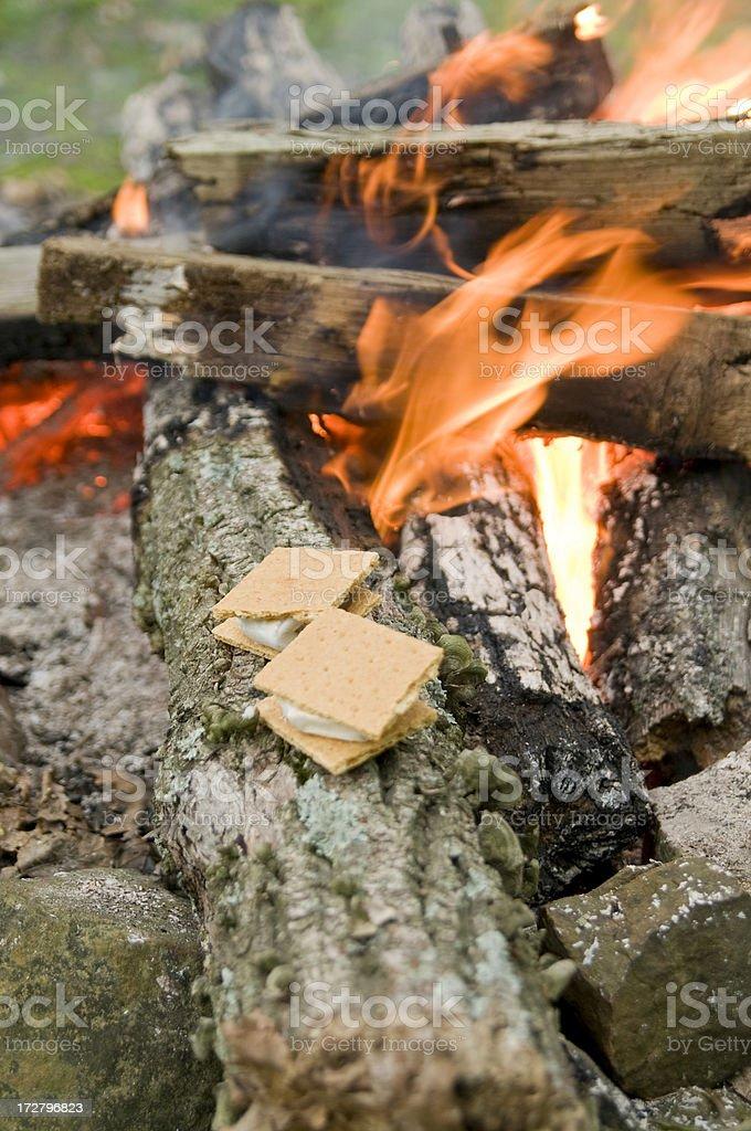 Smores on a log stock photo