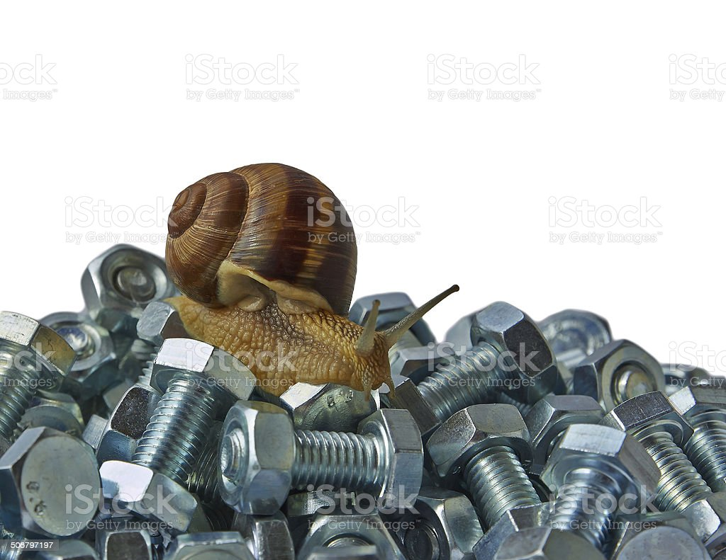 snail and bolts royalty-free stock photo