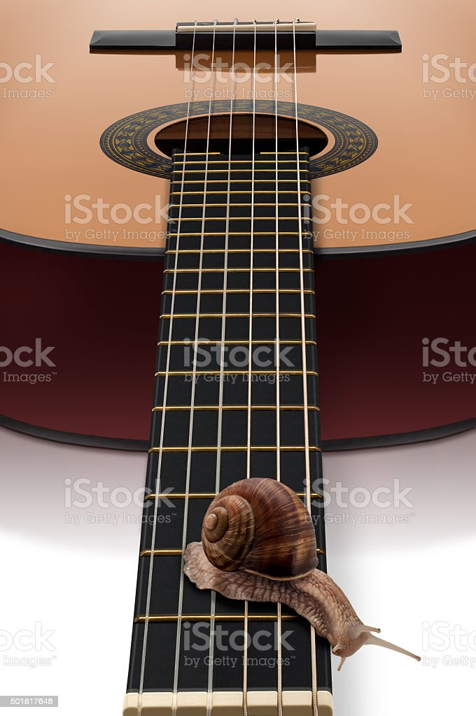 Snail and guitar stock photo