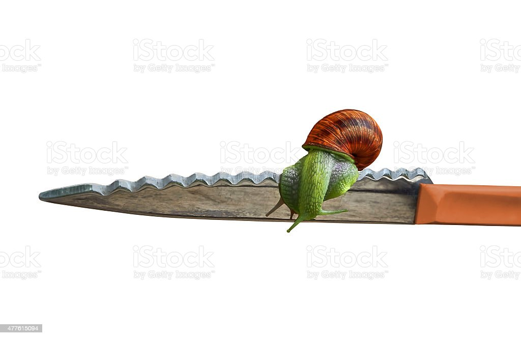 Snail and knife royalty-free stock photo