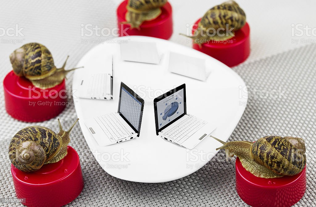 snail business meeting metaphor royalty-free stock photo