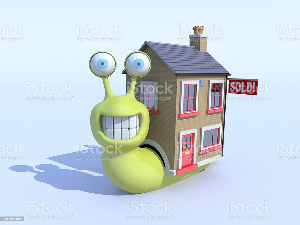 Snail buys a new house stock photo