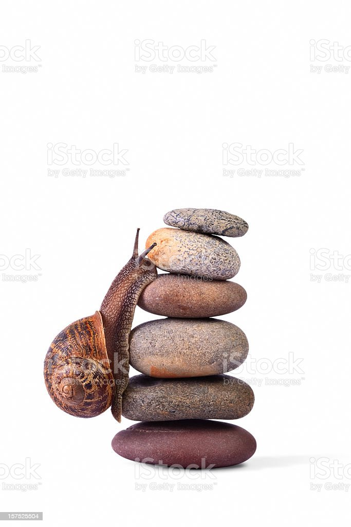 Snail climbing on top of stacked pebbles royalty-free stock photo
