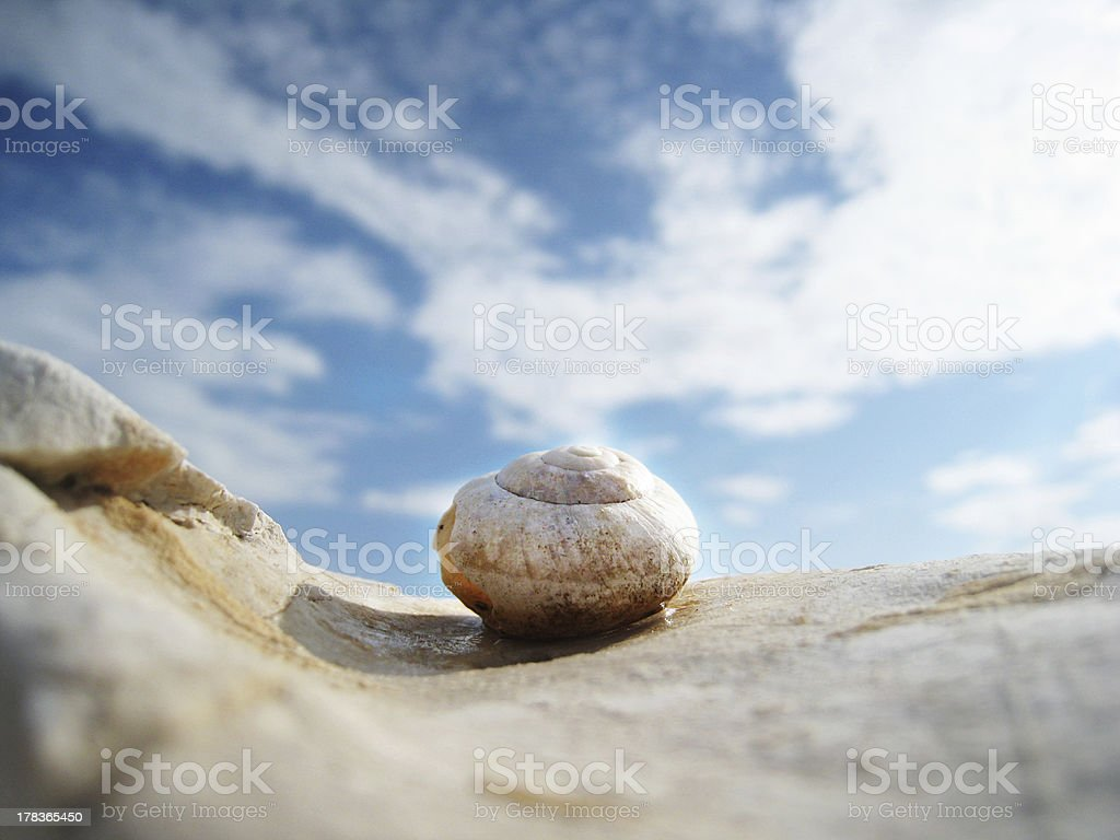 snail house on the beach  with wonderful sky stock photo