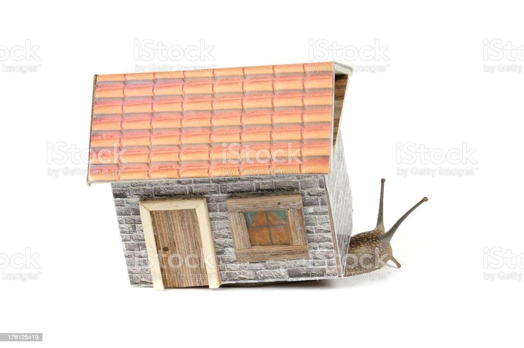 Snail in Dollhouse stock photo