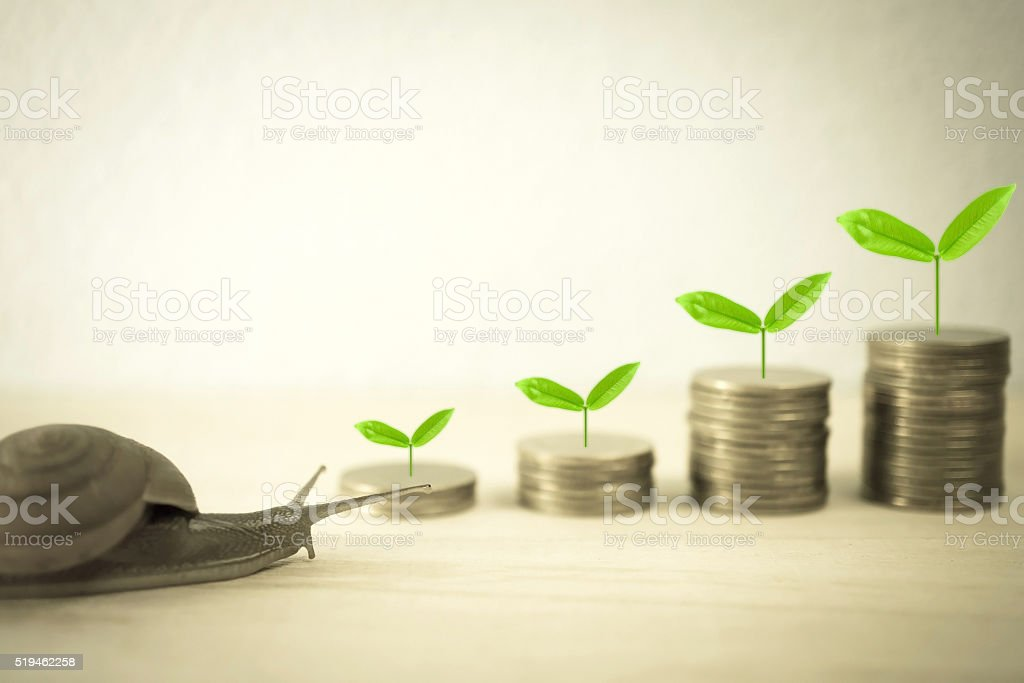snail low speed and growing plant on row of coins stock photo