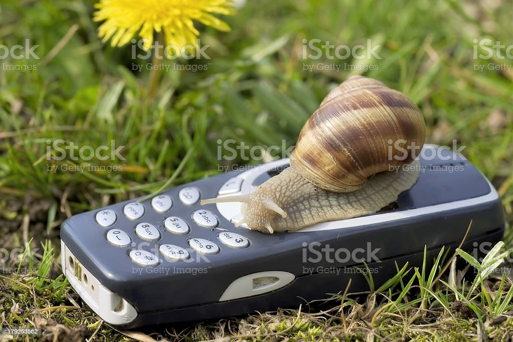 Snail on a mobile. royalty-free stock photo