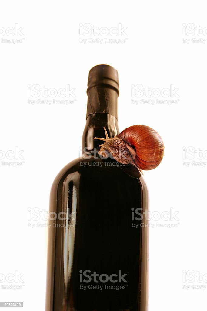 Snail on  bottle of wine royalty-free stock photo