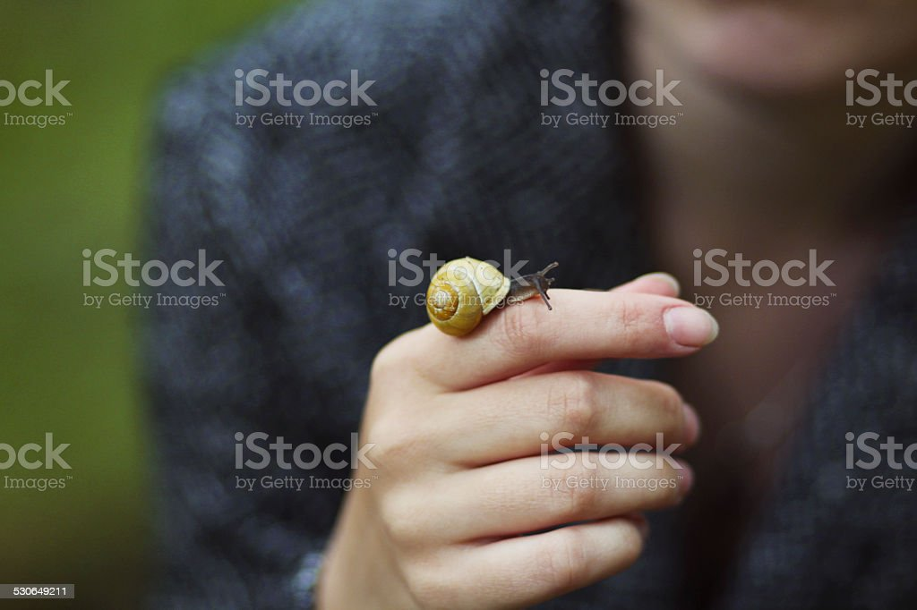 that photo was created this summer. there is a beautiful snail on a...