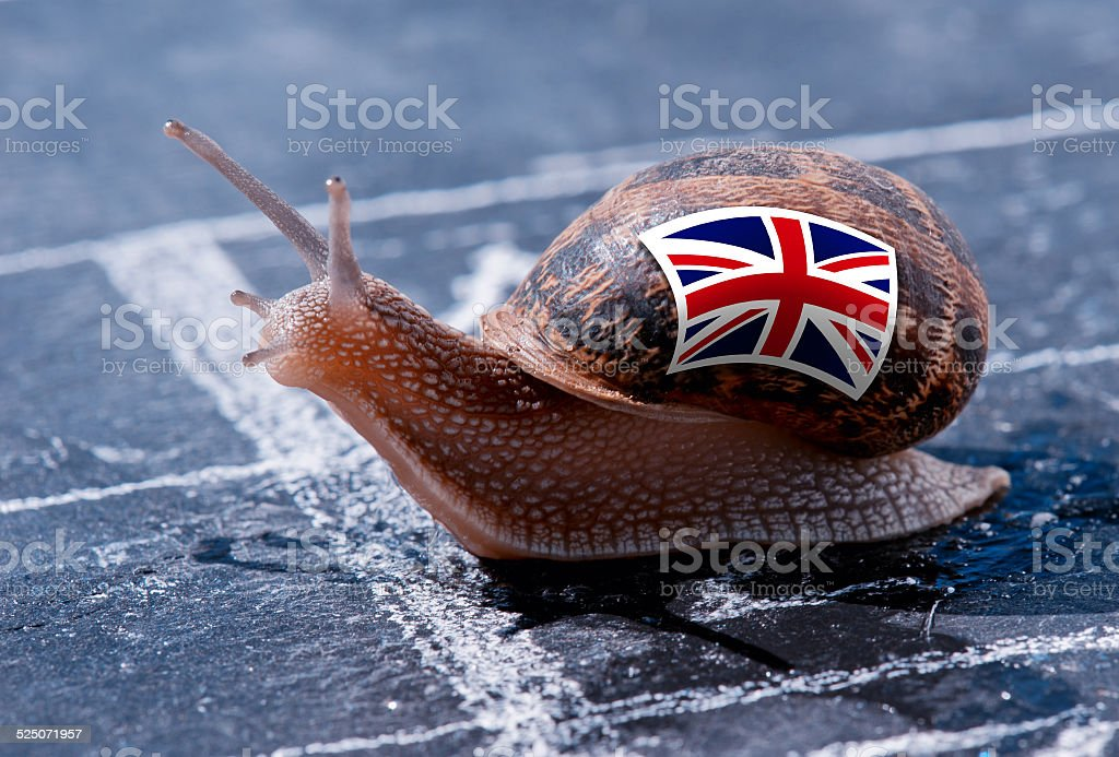 snail with the colors of England flag stock photo