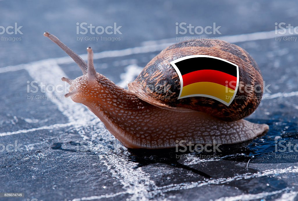 snail with the colors of Germany flag stock photo