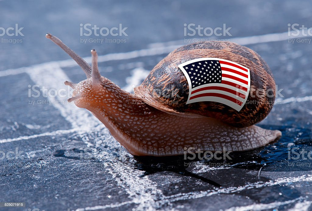 snail with the colors of Usa flag stock photo