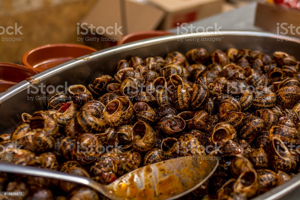 Snails cooked in tomatoe sauce stock photo