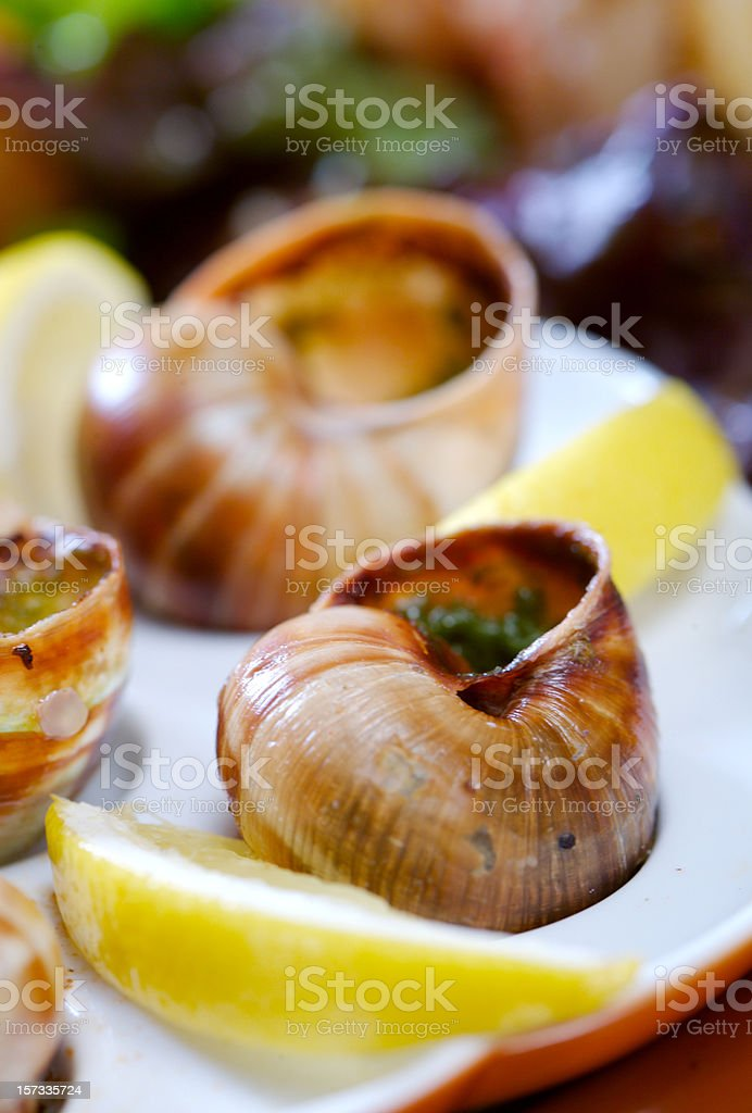 Snails in garlic sauce  royalty-free stock photo