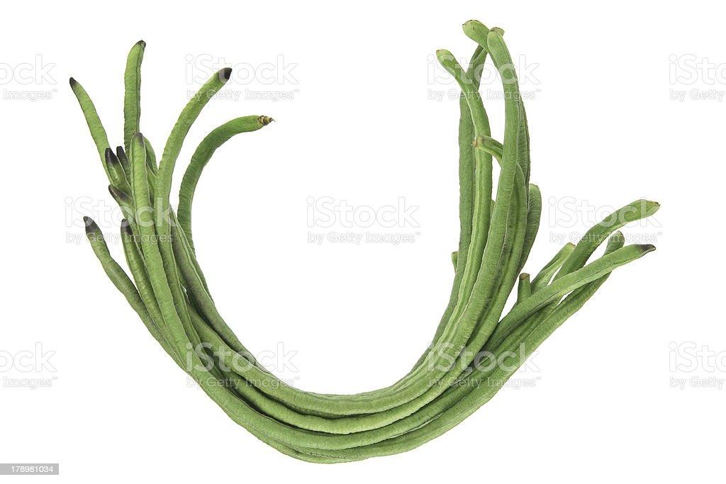 Snake Beans stock photo