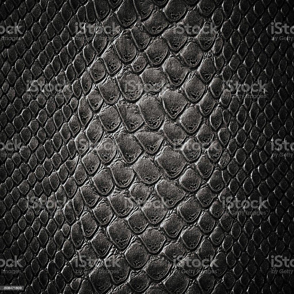 Snake black skin leather texture stock photo