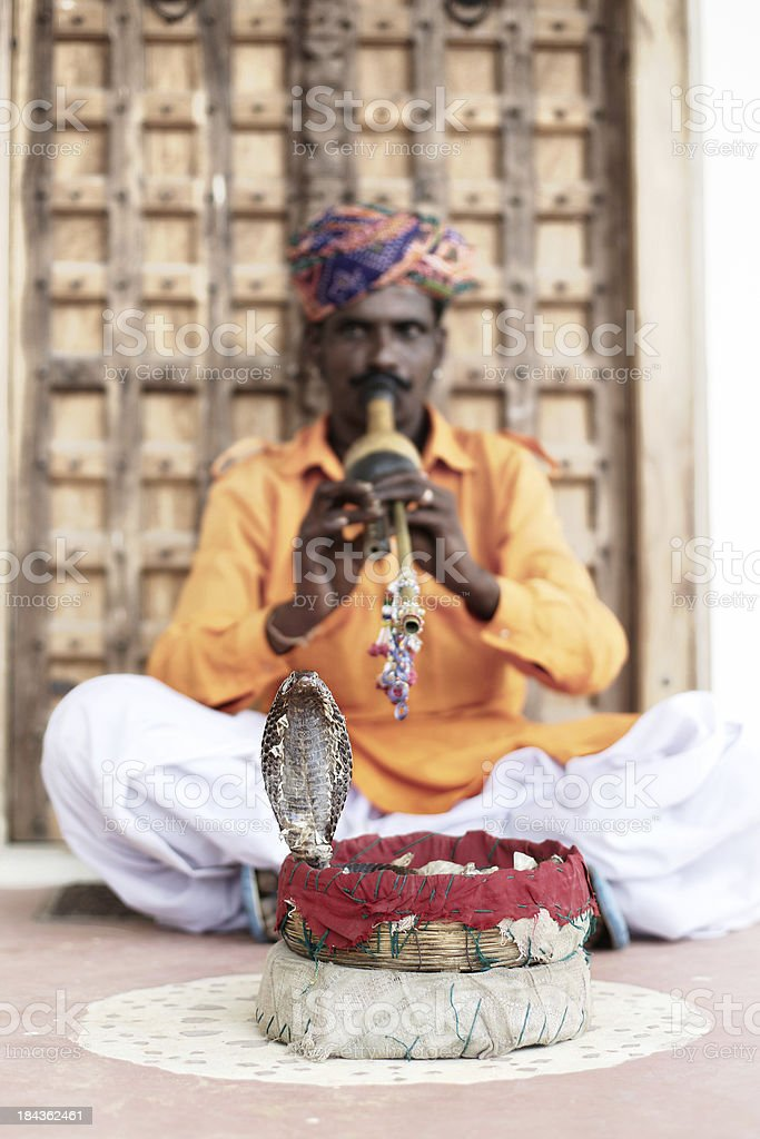 Snake charmer in action on Indian street royalty-free stock photo