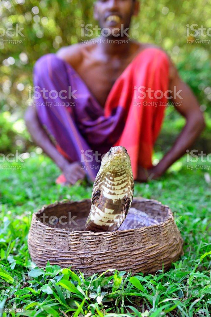 Snake Charmer in Kandy, Sri Lanka stock photo
