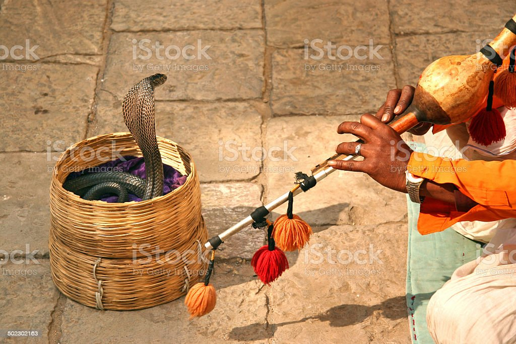 Snake charmer with cobra snake at Varanasi, India stock photo