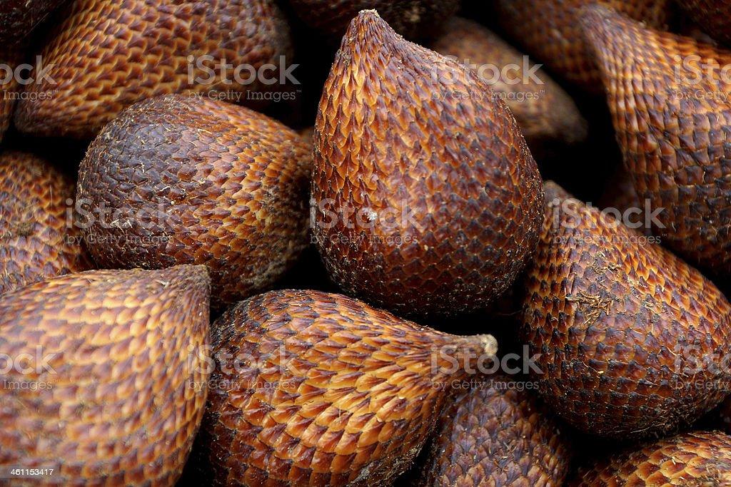 Snake Friut (Snake/Salak/Salacca/Sala) stock photo