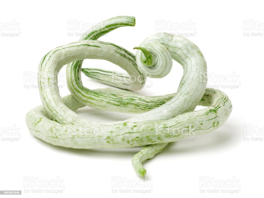 Snake gourd isolated on a white background stock photo