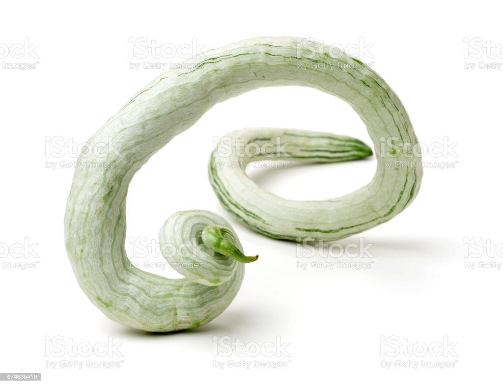 Snake gourd on white background stock photo