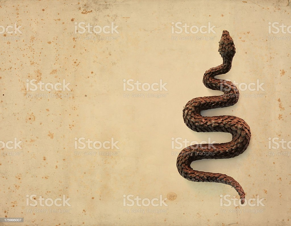 snake on rusty background royalty-free stock photo