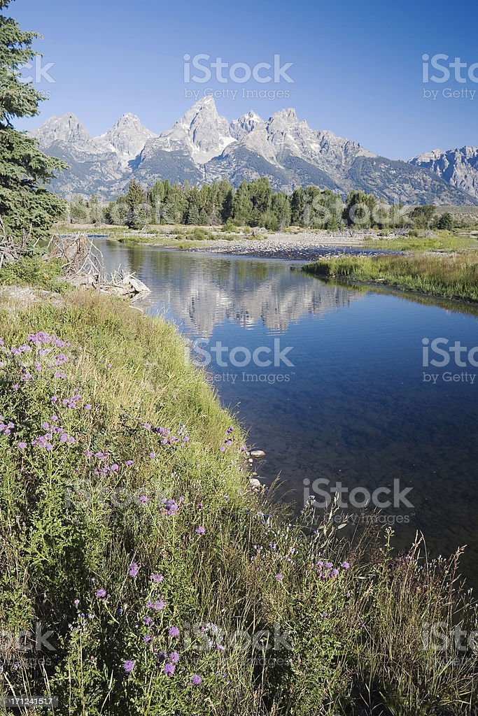 Snake River and Grand Teton Mountains royalty-free stock photo