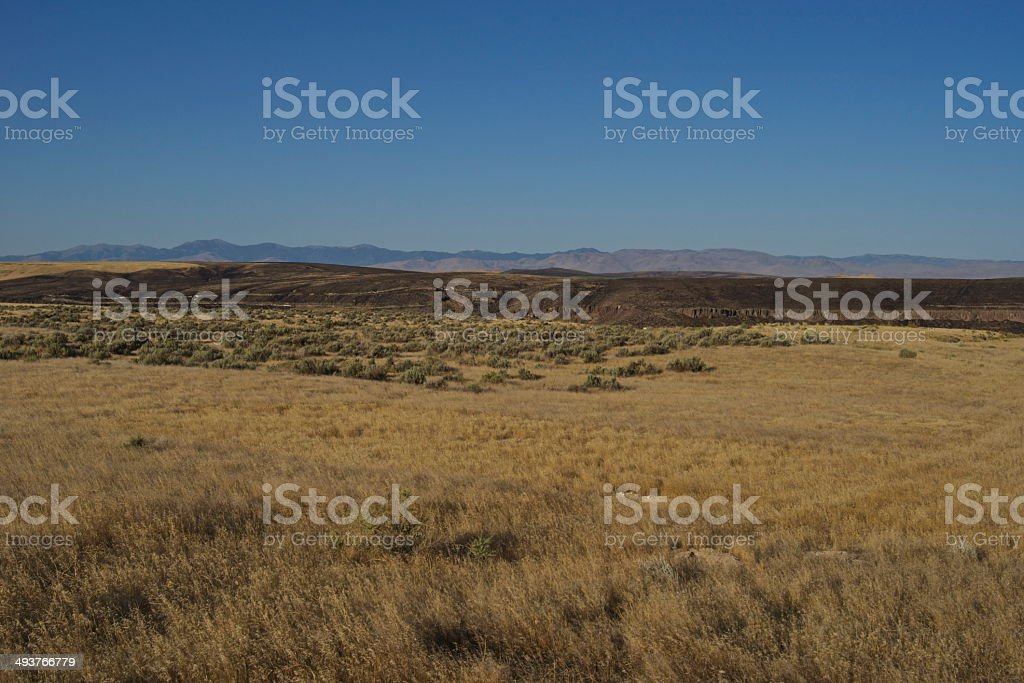 Snake River Canyon Area royalty-free stock photo