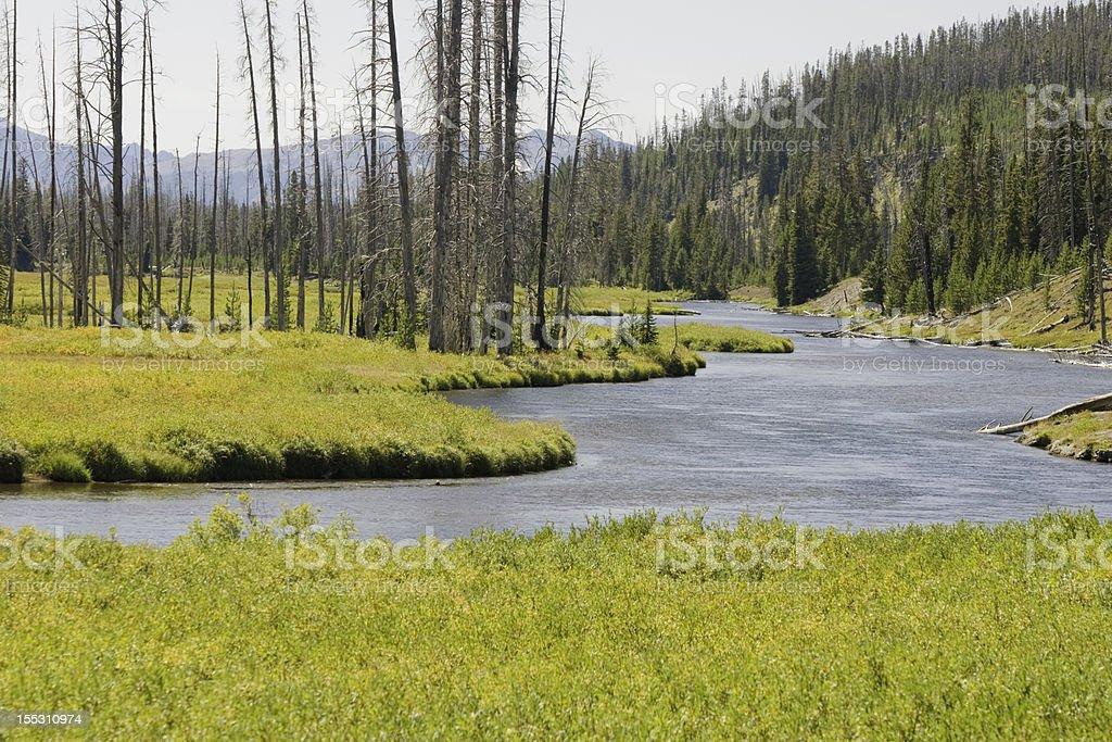 Snake River in Teton National Park royalty-free stock photo