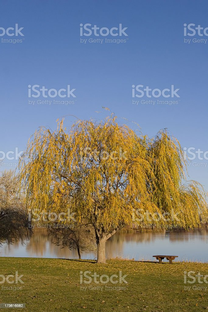 Snake River Sunrise royalty-free stock photo