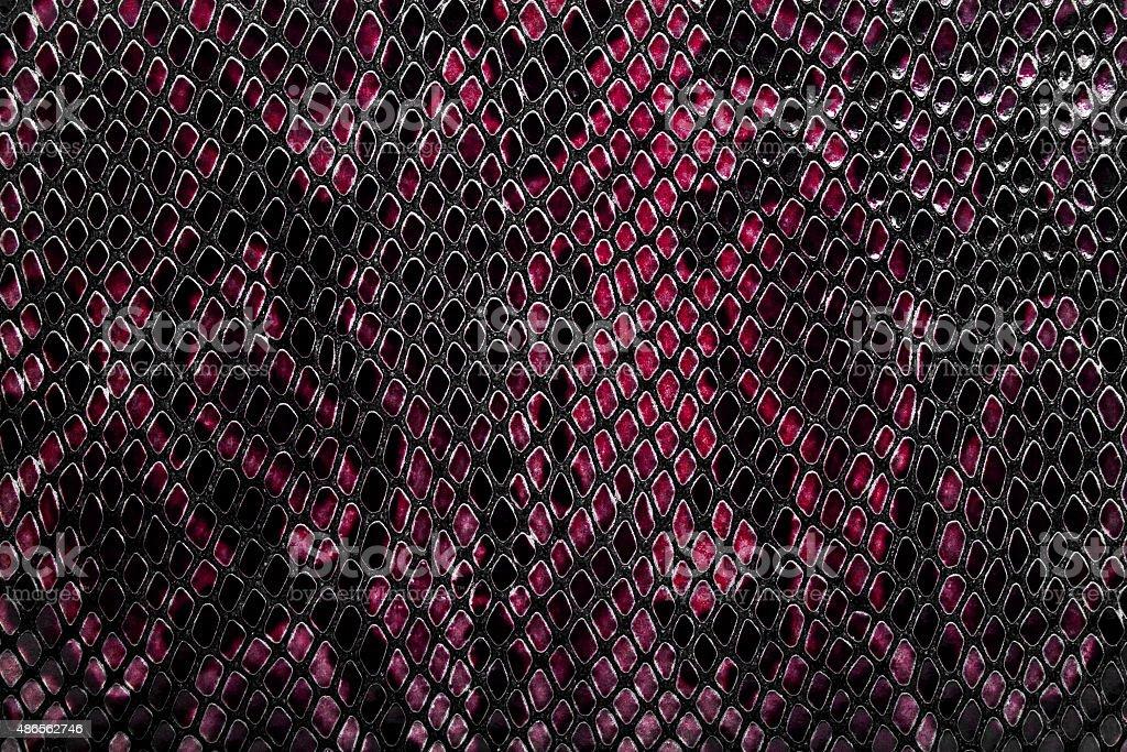 Snake skin background stock photo