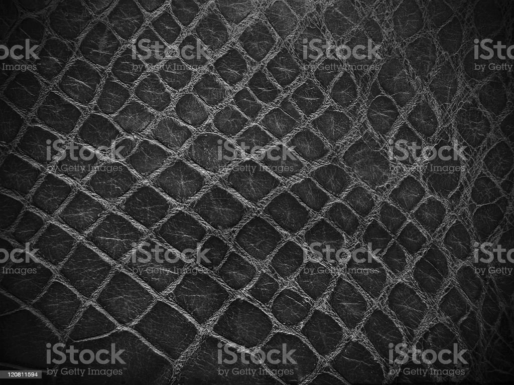 snake skin black and white close up stock photo