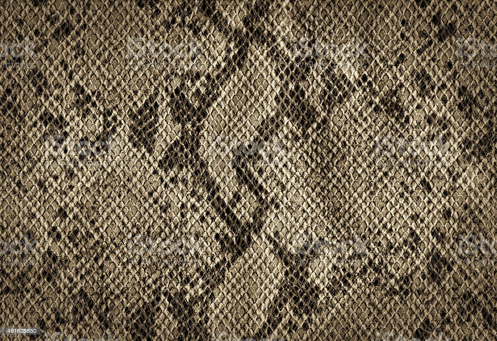 Snake skin golden vintage background stock photo