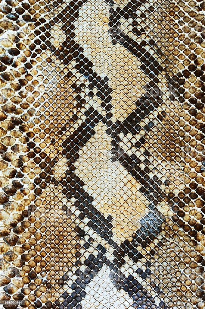 Snake skin pattern background stock photo