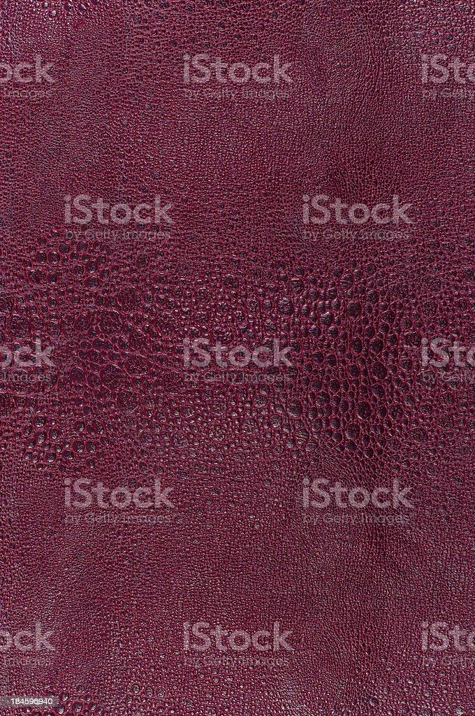 Snake skin texture royalty-free stock photo