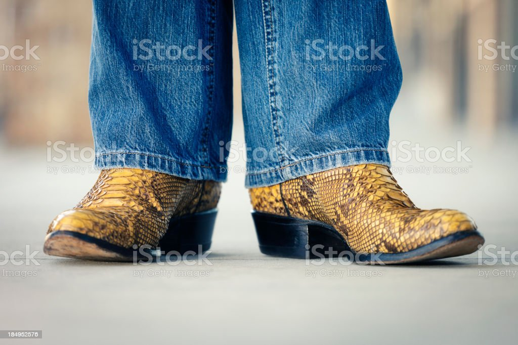 Snakeskin Cowboy Boots stock photo