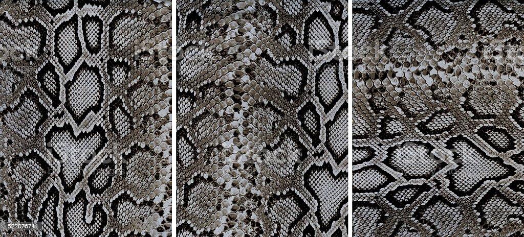 Snakeskin leather textures stock photo