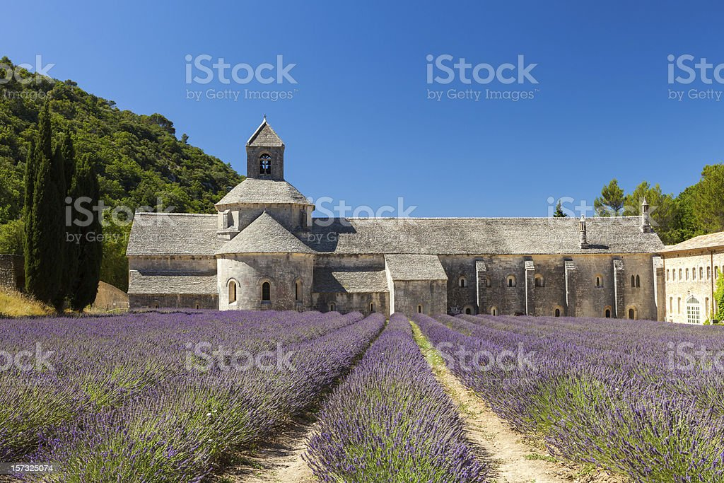 Abbaye de Sénanque with blooming lavender field, Provence, France stock photo