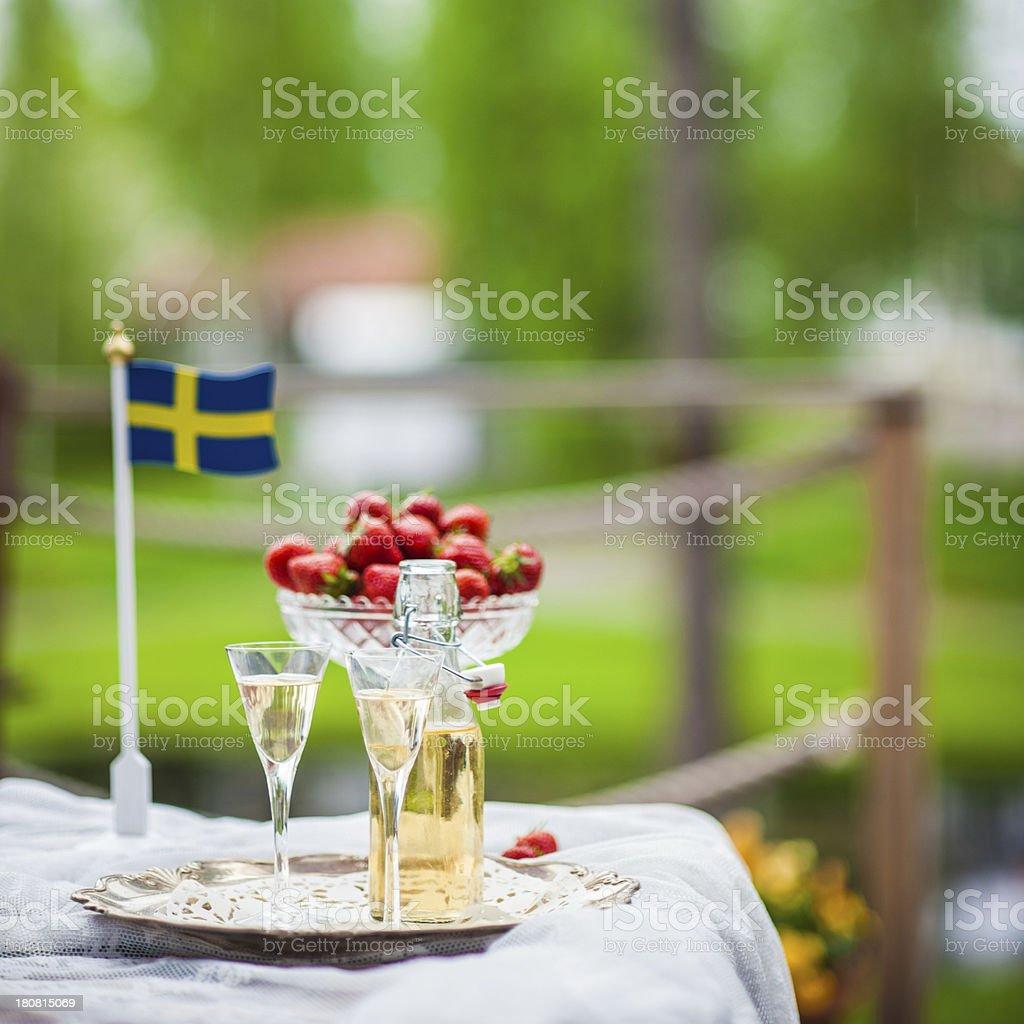Snaps and swedish flag stock photo